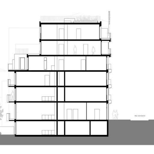 14-logements-plan-de-coupe