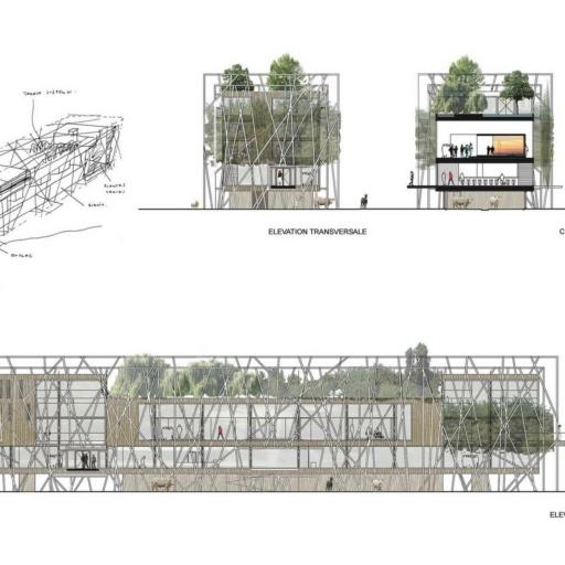 mathieu-godard-architectures-alamamatere-elevation